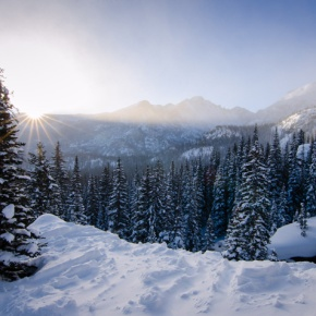 Educational snowshoe hiking series offered in Rocky Mountain National Park