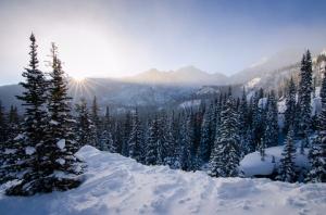 WinterAwakening_CB