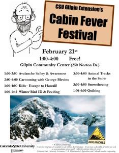 2015 Cabin Fever Festival