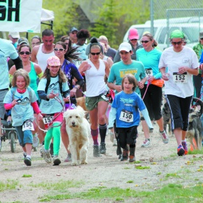 Dog-friendly race continues to grow inpopularity