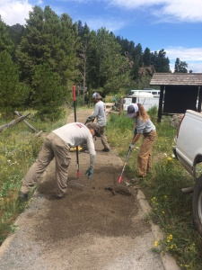 Conservation Corps interns working to resurface the Lily Lake Trail