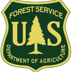 Spring stewardship day planned in forest near Nederland