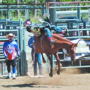 Gilpin County Fair offers new events, activities, contests