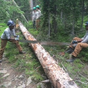 Rocky Mountain Conservancy celebrates successes of this season's Conservation Corps program
