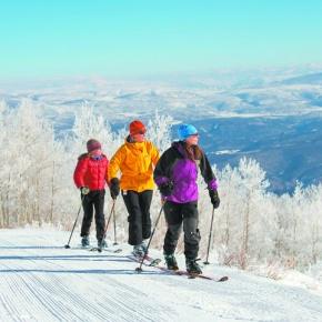 COVER: Nordic ski resorts, backcountry offer winterenjoyment
